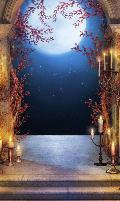 Download 480x800 «Fantasy Night» Cell Phone Wallpaper