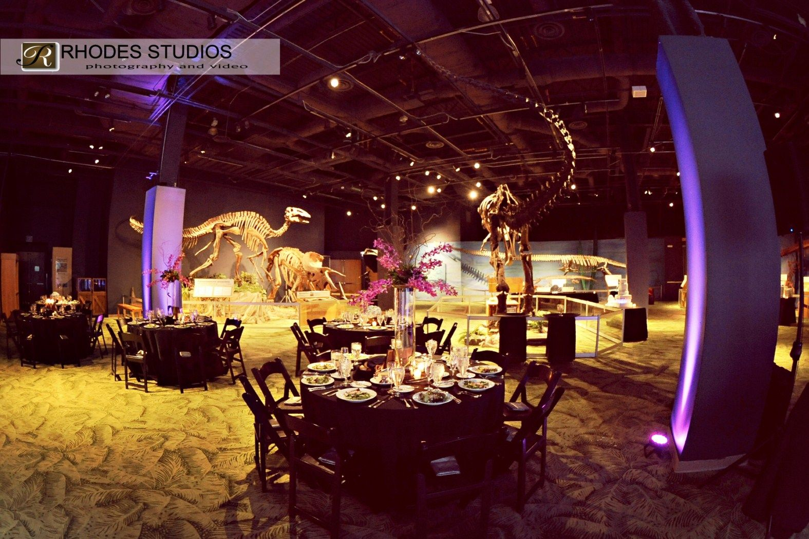 Orlando Wedding Dj Our Rocks Science Center Rhodes Studios Photography