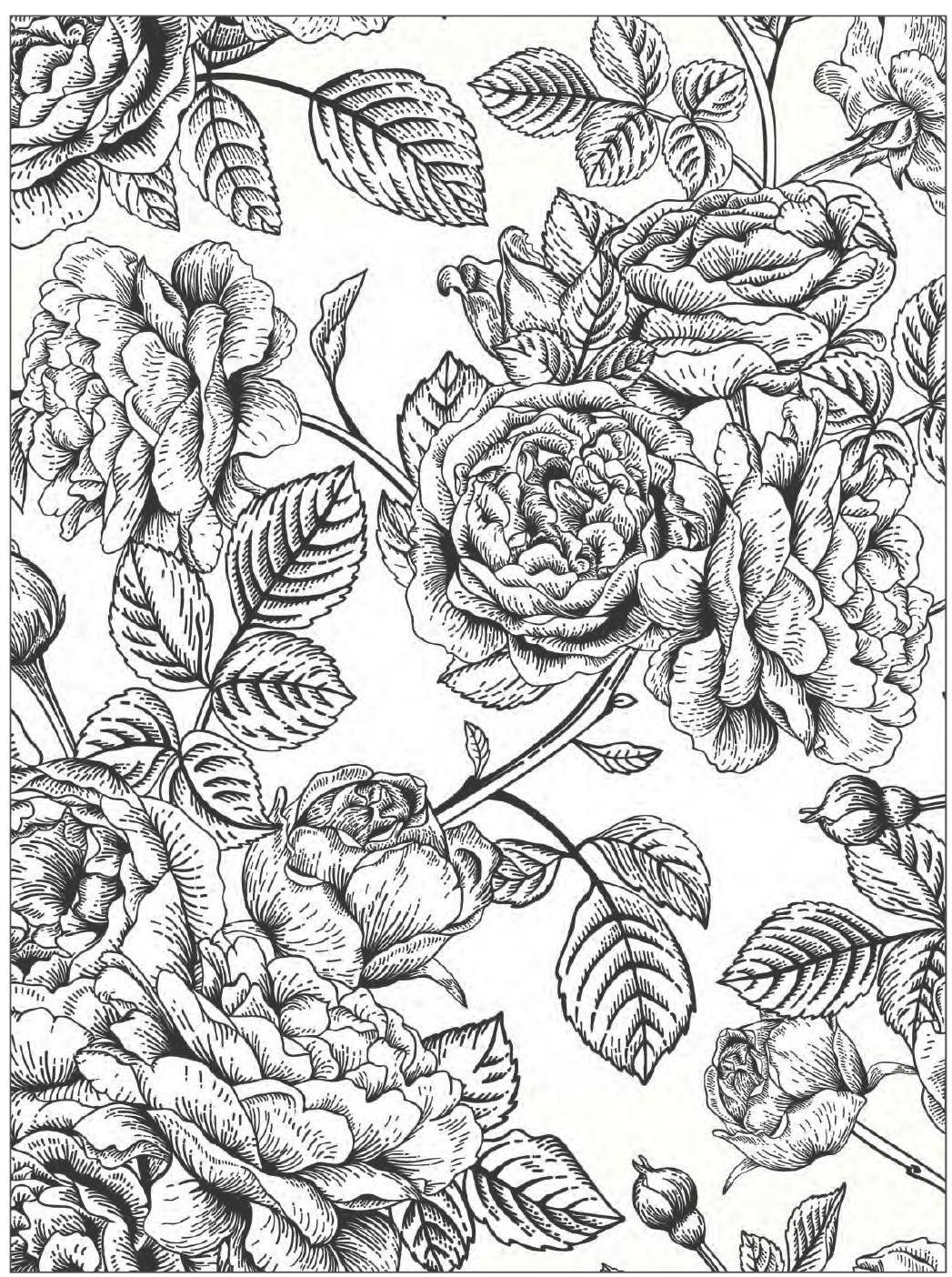 Flower Designs Coloring Book Background