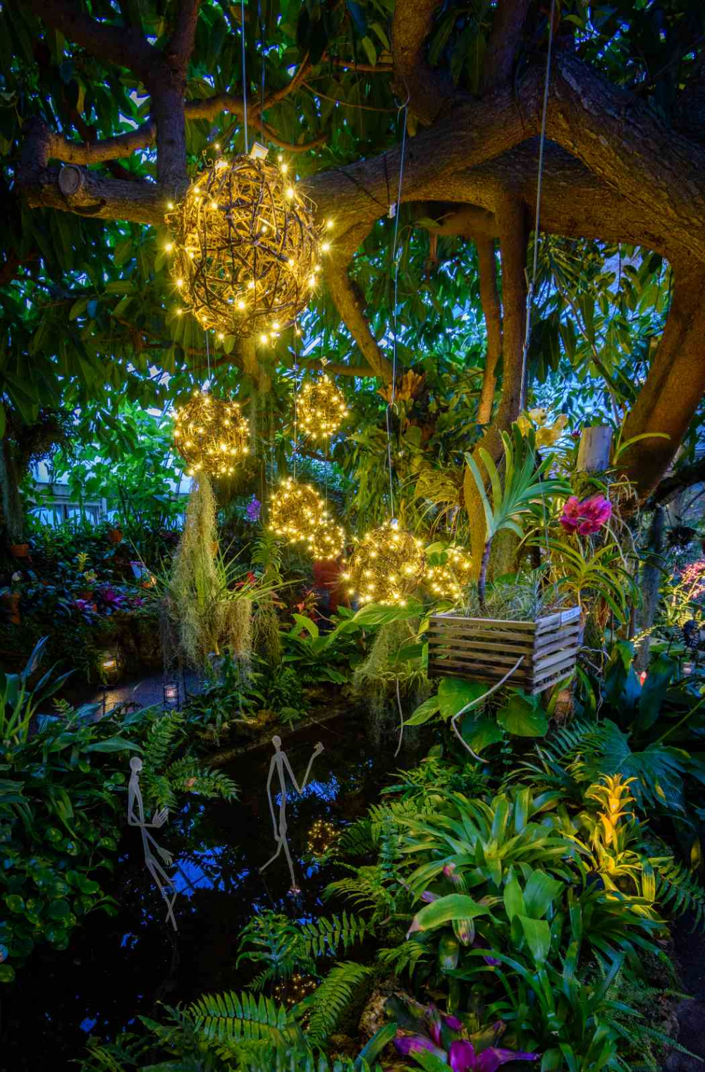 7996b0ae8ea0b6d91d773da8d1e03422 - Botanical Gardens St Louis Light Show