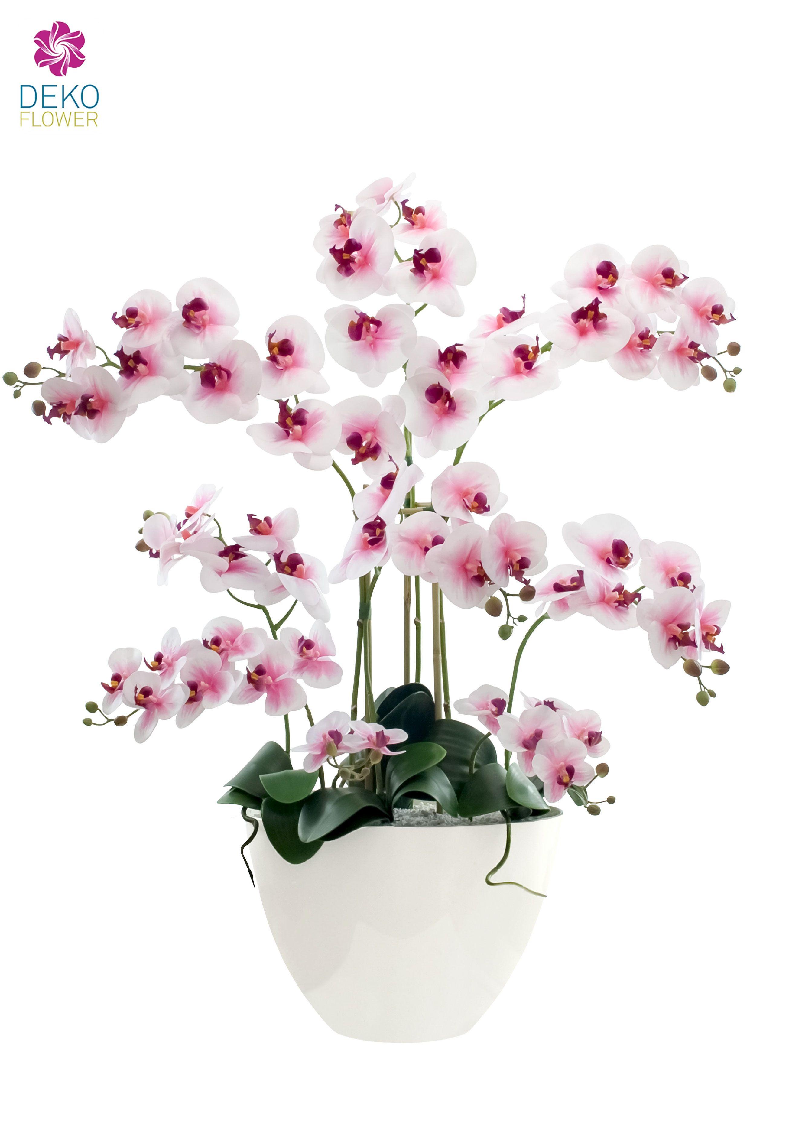 pin von dekoflower kunstpflanzen auf k nstliche orchideen. Black Bedroom Furniture Sets. Home Design Ideas