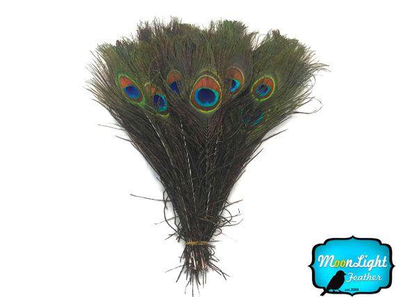 10-12 inch Peacock Eyes Feathers UK Stock Bulk