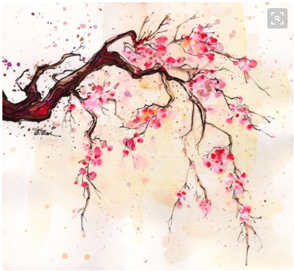 Cherry Blossom Inspiration From Etsy And Pinterest Cherry Blossom Painting Cherry Blossom Watercolor Art