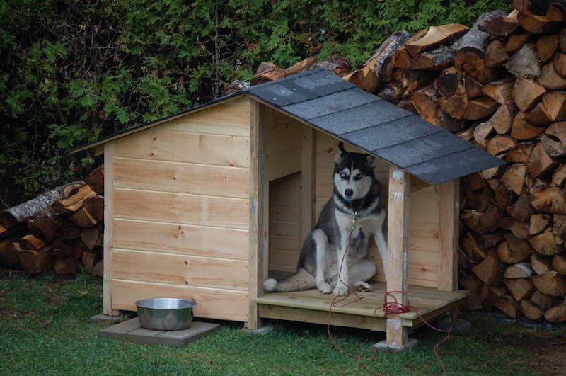 construire-une-niche-pour-chien-en-palette Palettes Pinterest - Construire Sa Maison En Palette