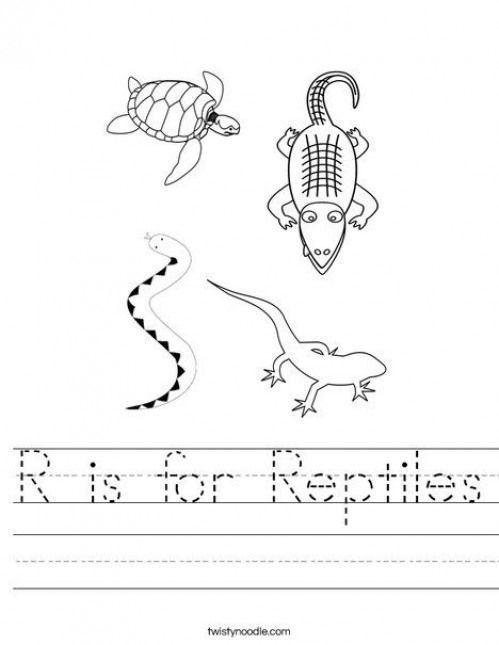 Reptiles Worksheet