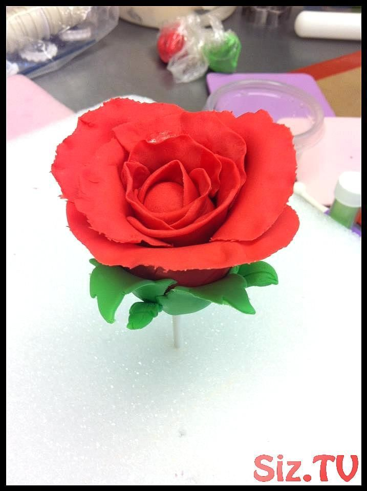 There is a red velvet cake pop in this rose  I can  t wait to see the finished bo   There is a red velvet cake pop in this rose  I can  t wait to see the finished bo   There is a red velvet cake pop in this rose  I can  t wait to see the finished bouquet  There is a red velvet cake pop in this rose  I can  t wait to see the finished bo   There  hellip   #finished #velvet #cakepopbouquet There is a red velvet cake pop in this rose  I can  t wait to see the finished bo   There is a red velvet cake #cakepopbouquet