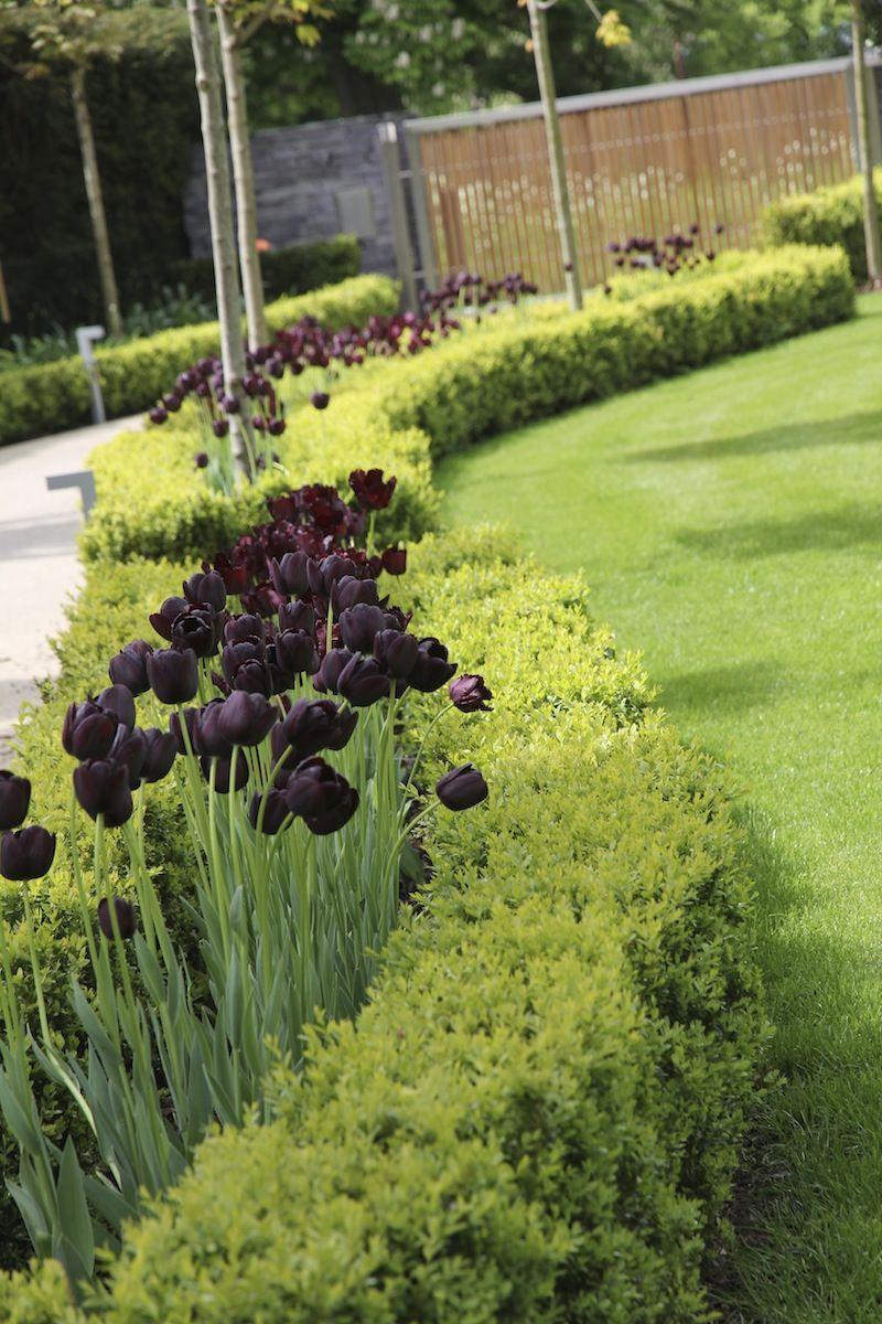 North End Garden Design Oxfordshire Garden Design Classic Garden Landscape Design