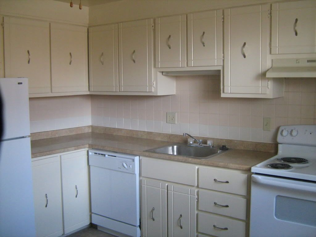 Kitchen Cabinet Ideas For Renters White Cabinets Pictures Images And Photos Rental