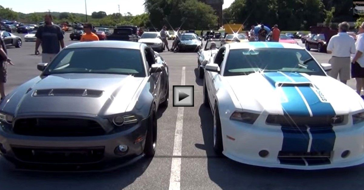 Ford mustang shelby 1000 gt350 back to back mustang gt