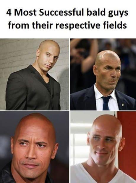 Bald But Successful Going Bald Memes Balding