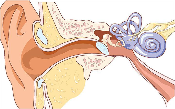 this trick will actually end your tinnitus ear ringing no drugs