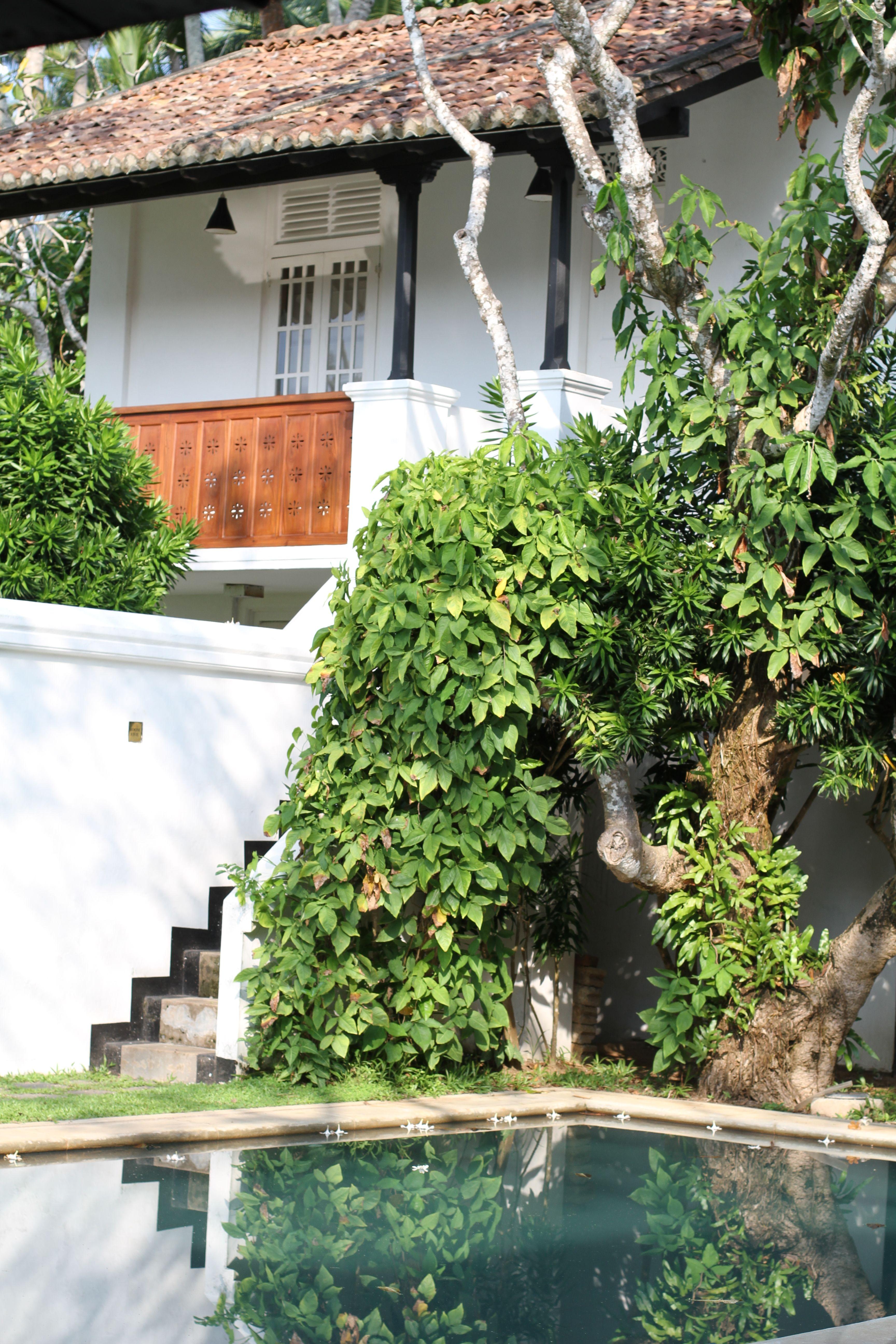 The Villa Bentota (Sri Lanka) Garden architecture