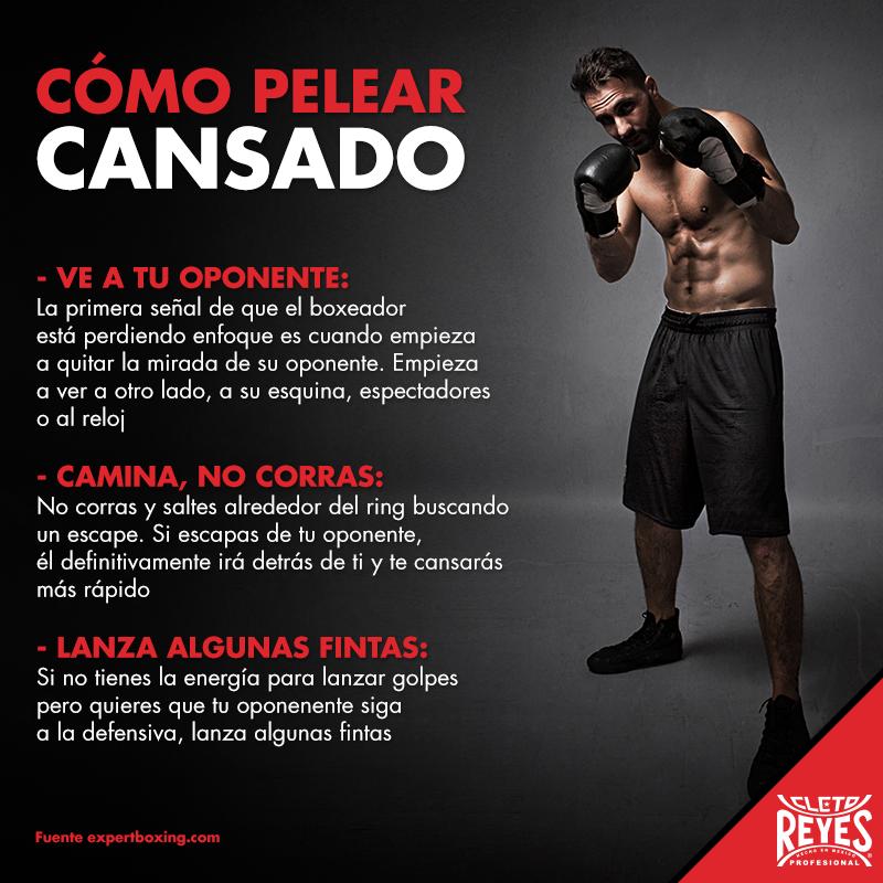 Aprende A Pelear Cansado Box Workout Training Cletoreyes Entrenamiento De Boxeo Golpes De Boxeo Rutina De Boxeo