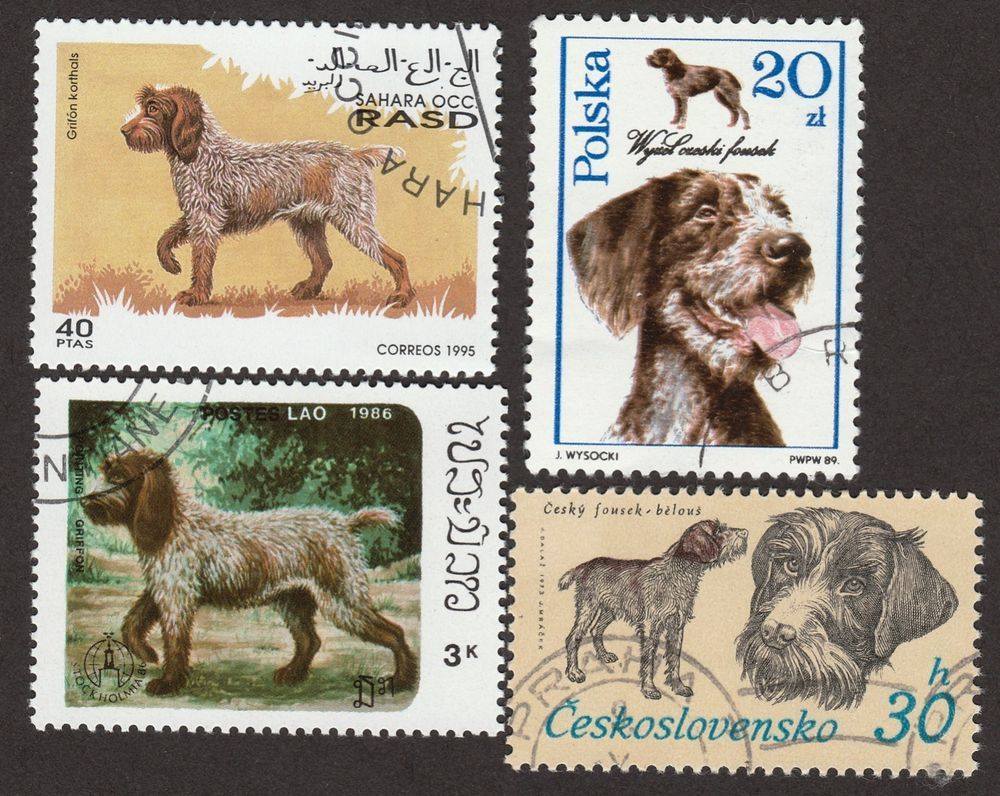 WIREHAIRED POINTING GRIFFON ** Int'l Dog Stamp Collection ...