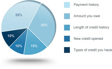 Fico Credit Score Calcuation Pie Chart