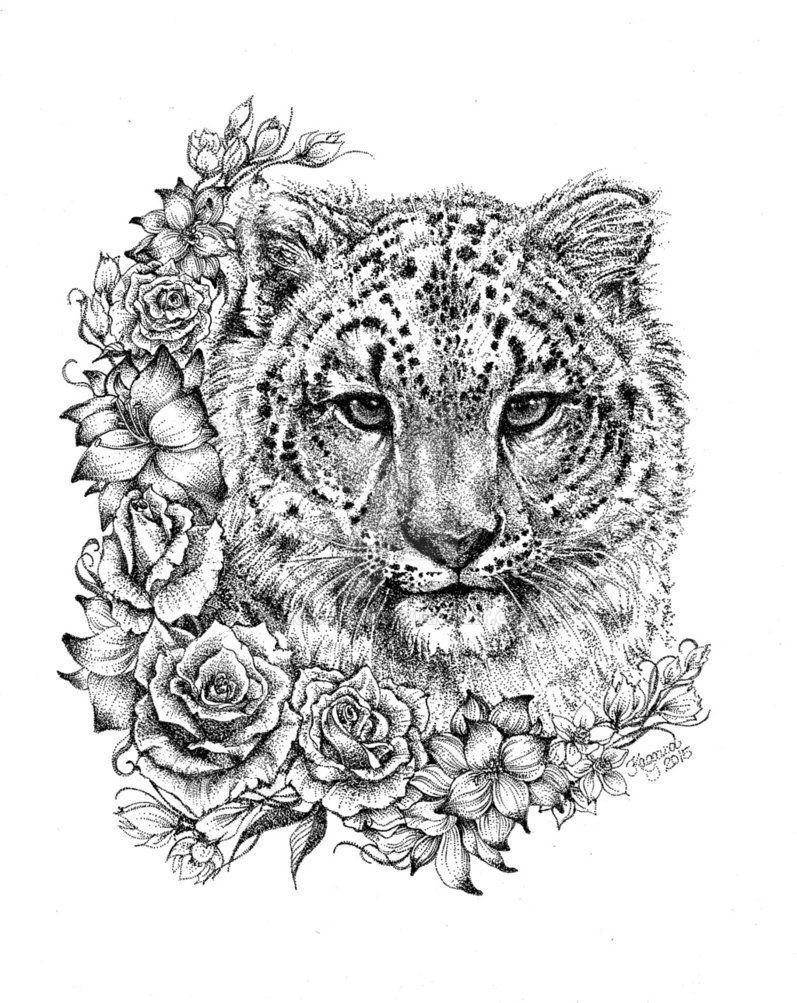 Snow Leopard By Lkburke29 Deviantart Com On Deviantart Snow