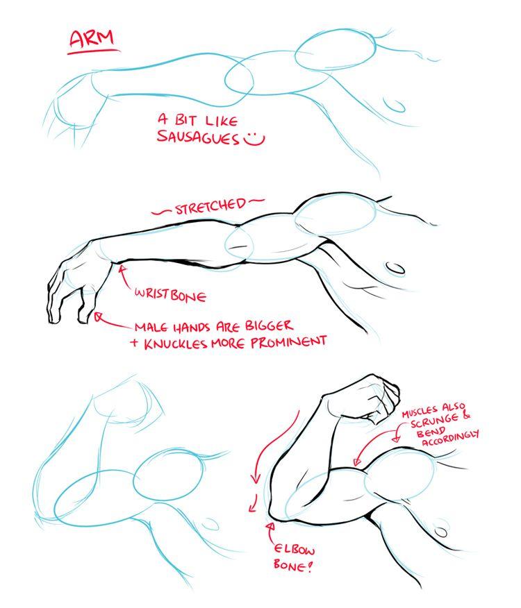 Como dibujar #Brazos #anime | vocetos& | Pinterest | Brazos, Dibujar ...