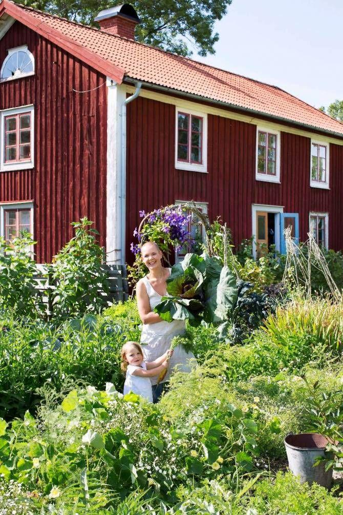 På besök hos självförsörjande Sara Bäckmo.