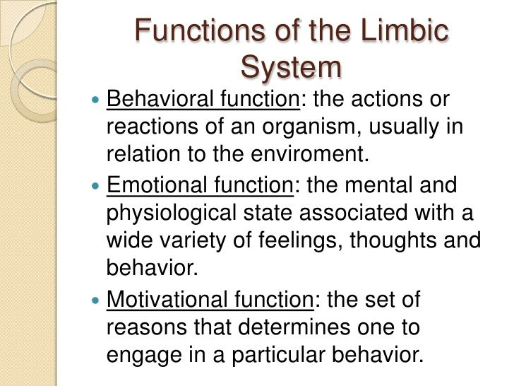 Limbic system | Neuro (inc reflexes, diagnosis', tone, dys ...