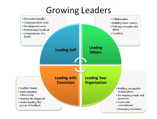 mentoring as a training and development strategy for activating leaders Mentoring as a talent development strategy december 16, 2015 talent development has traditionally been met using training and coaching solutions that can be effective but also expensive per.