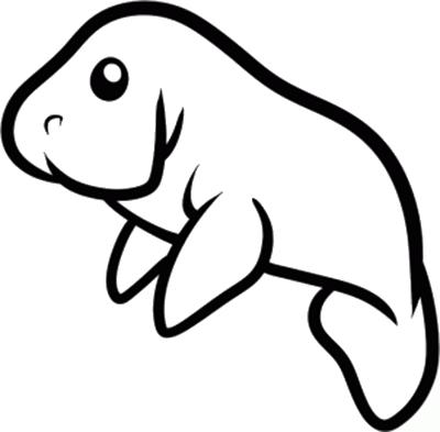 Manatee Easy Animal Drawings Drawings Manatee