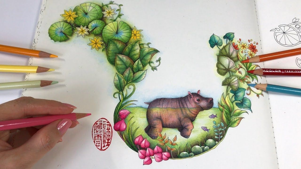 Baby Hippo Magical Jungle Coloring Book Youtube Joanna Basford Coloring Magical Jungle Johanna Basford Johanna Basford Coloring Book
