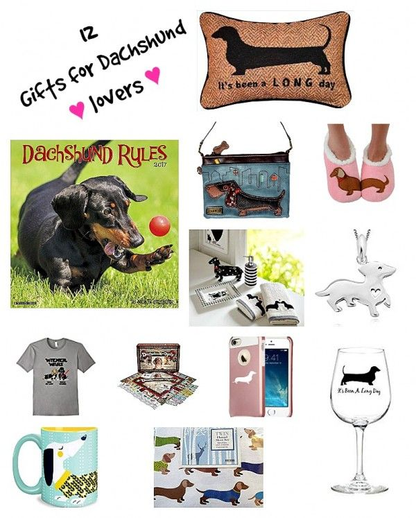1921989a52 Gift Ideas for Dachshund Lovers | Doxie Themed Goodies | Dachshund ...