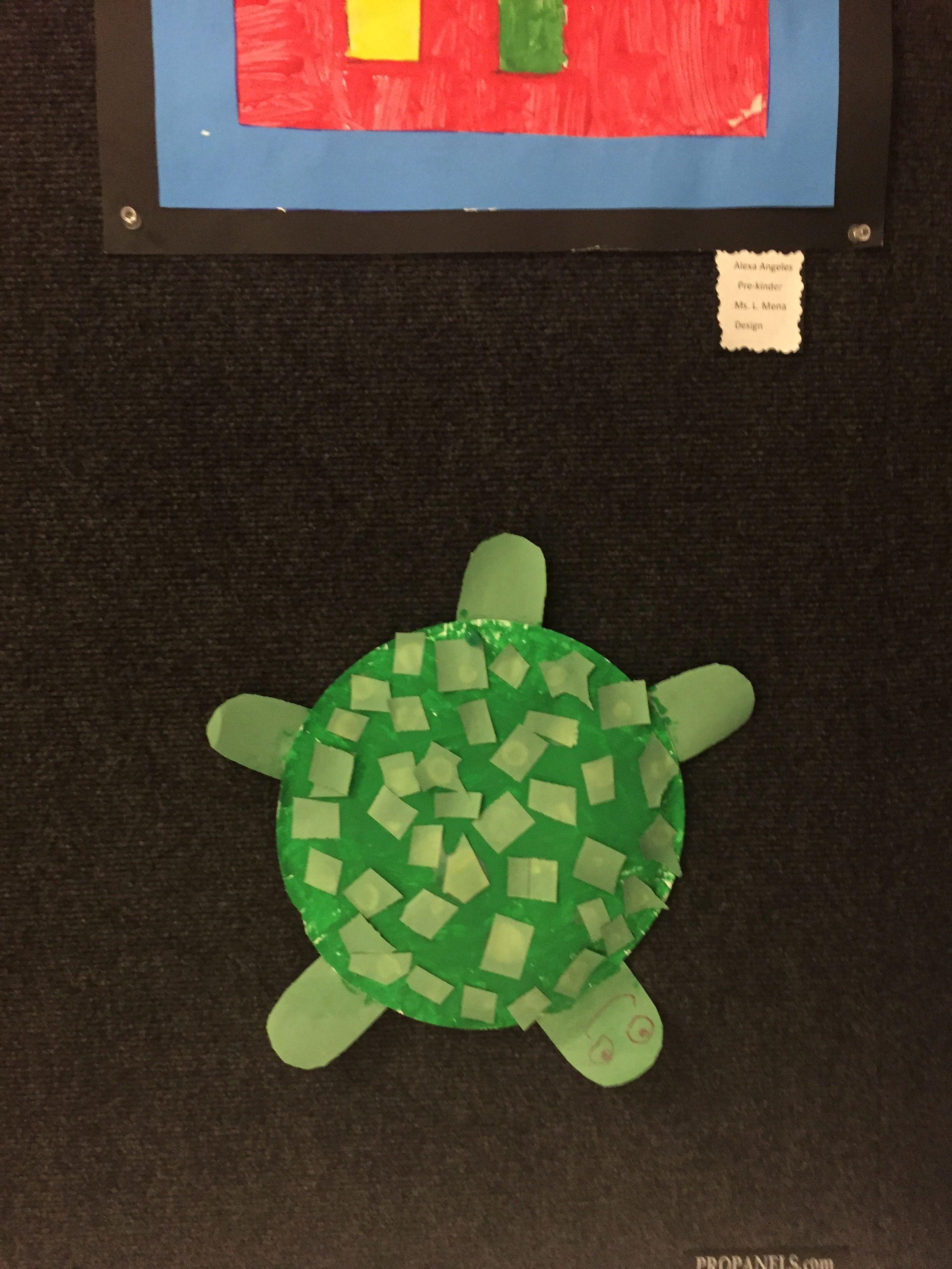 Green Round Turtle