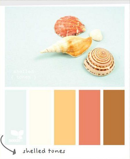 love this color scheme for bathroom. robin egg blue, mango, and