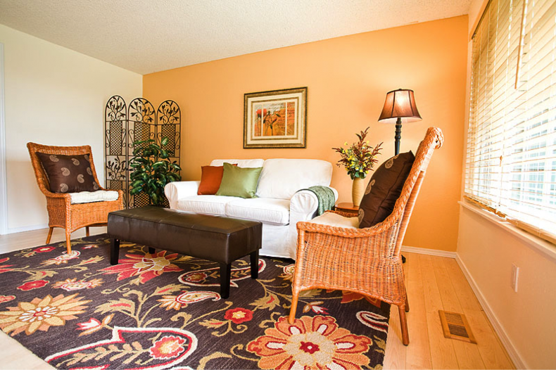 Light Orange Accent Wall Interior Color Schemes For The Home Rh Pinterest  Com