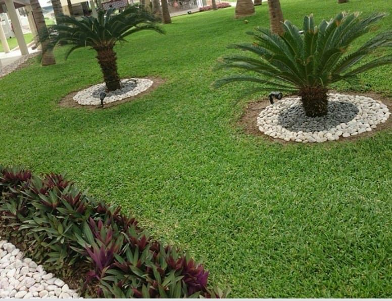 Paisajismo Jardinesverticales On Instagram Jardin Decorado Con