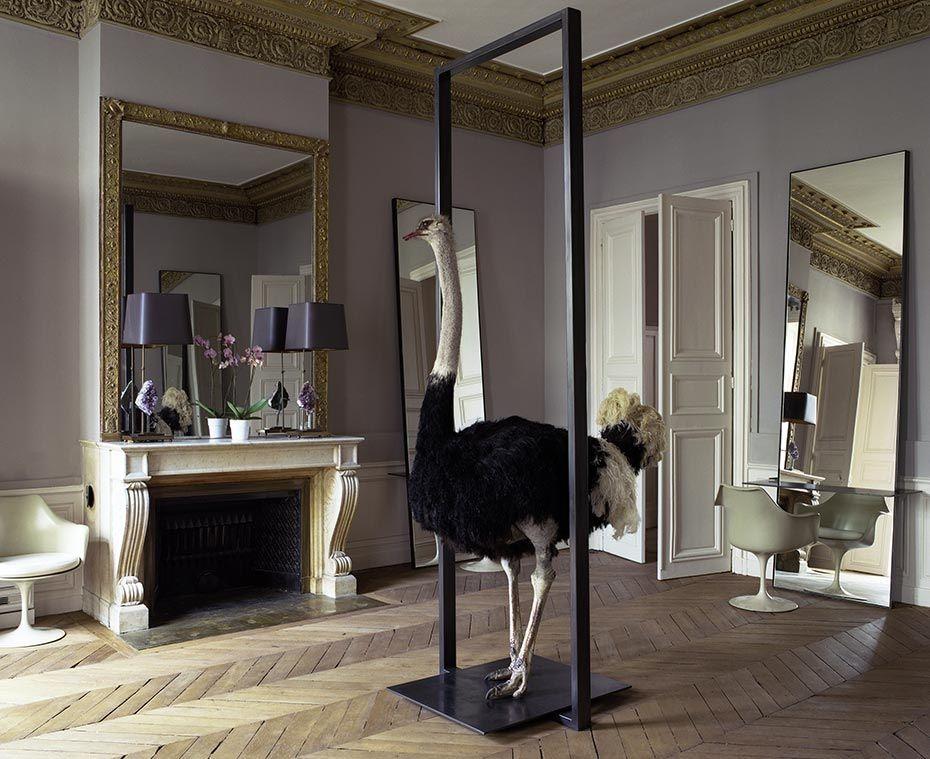 Amaizing David Mallet Salon Salon De Coiffeur 14 Rue Notre Dame Des Victoires 75002 Paris International Interior Design Hair Salon Design