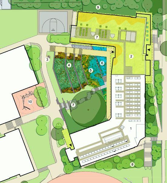Sidwell Friends School constructed wetlands and raingardenetland