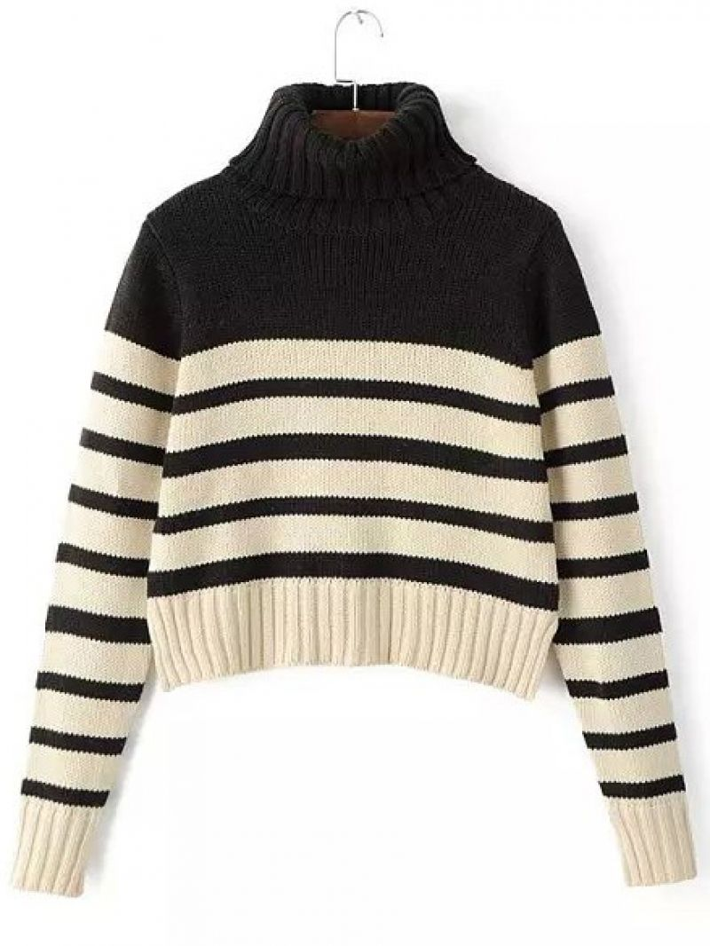 Black Apricot Turtleneck Striped Crop Sweater -SheIn(abaday)