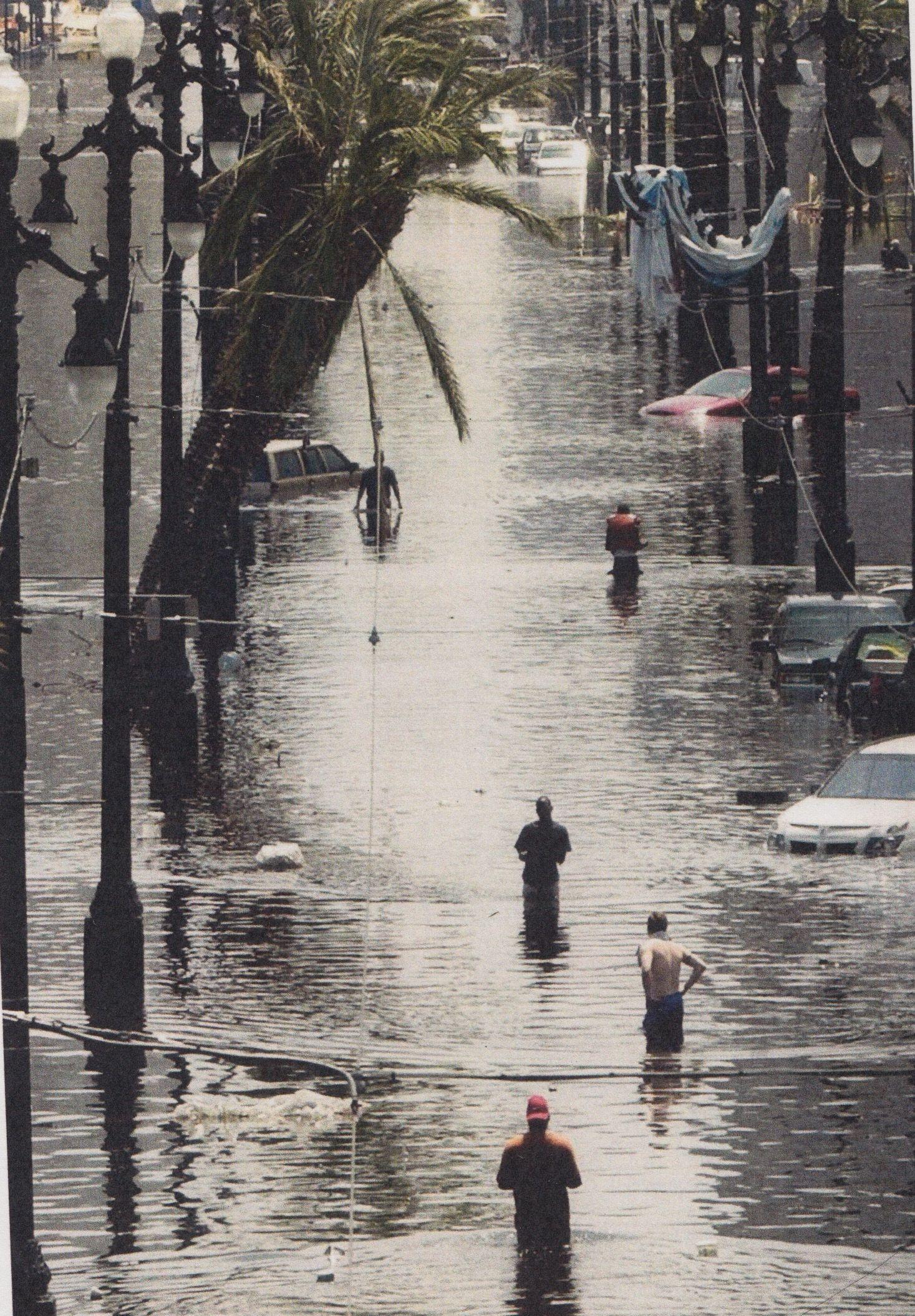 Disaster & refuge John McCusker, 'Canal Street, New Orleans' 2005