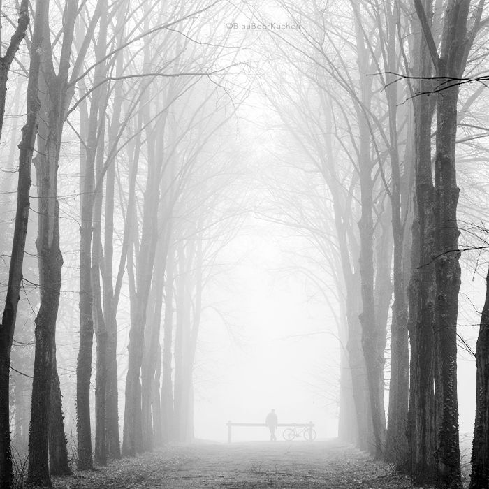 """on a half forgotten day"" by BlauBeerKuchen.deviantart.com on @DeviantArt  #barren #bicycle #fog #mist #treelined #trees #waiting #half #forgotten #day #forest #bw #blackwhite"