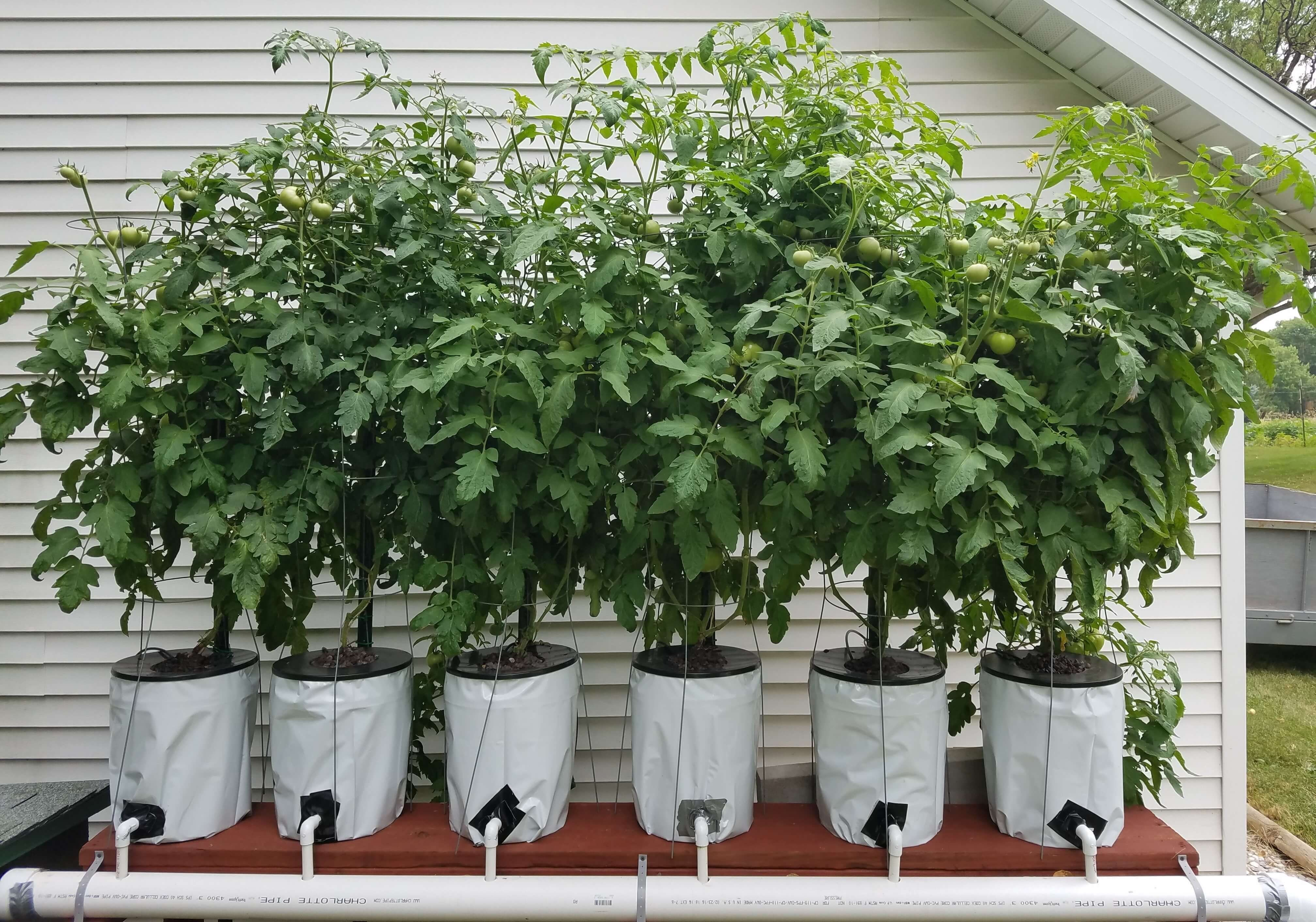 Hydroponic Gardening Supplies For The Beginner