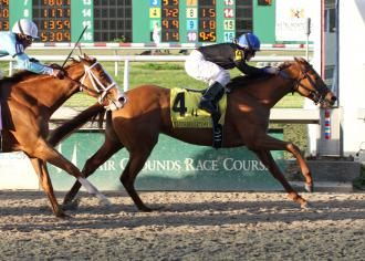 Touch Magic wins at the Fair Grounds