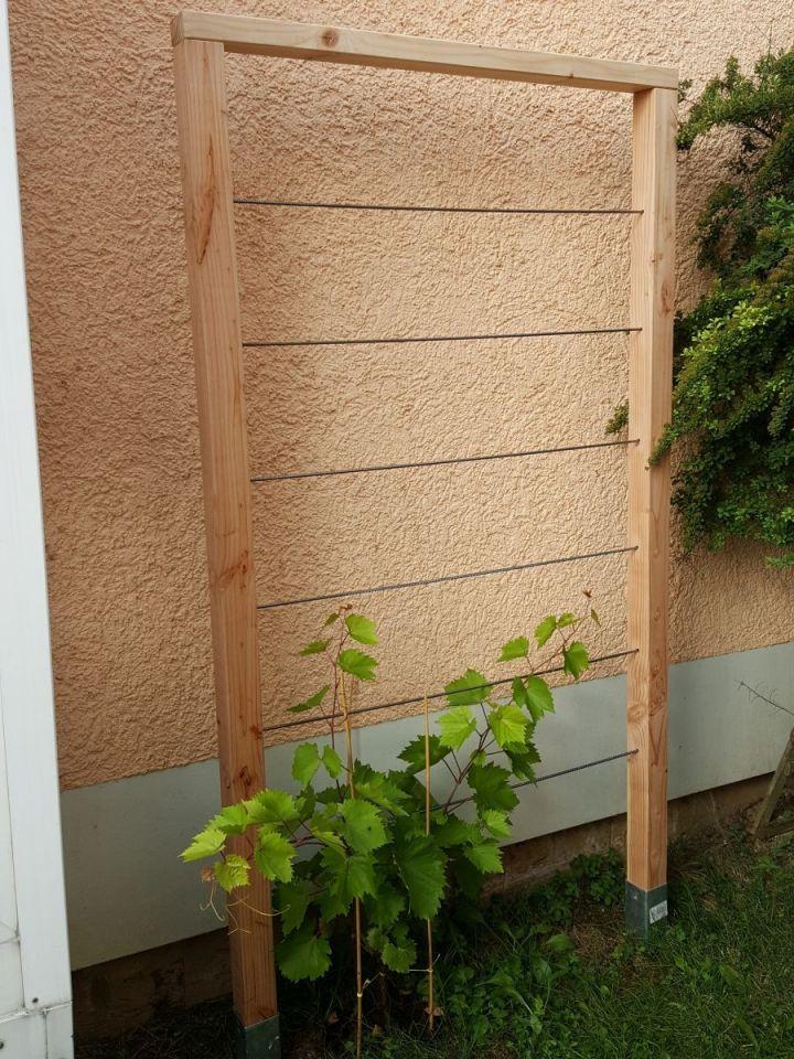 Rankhilfe für Weinrebe - Bauanleitung zum Selberbauen - 1-2-do.com - Deine Heimwerker Community #kräutergartendesign