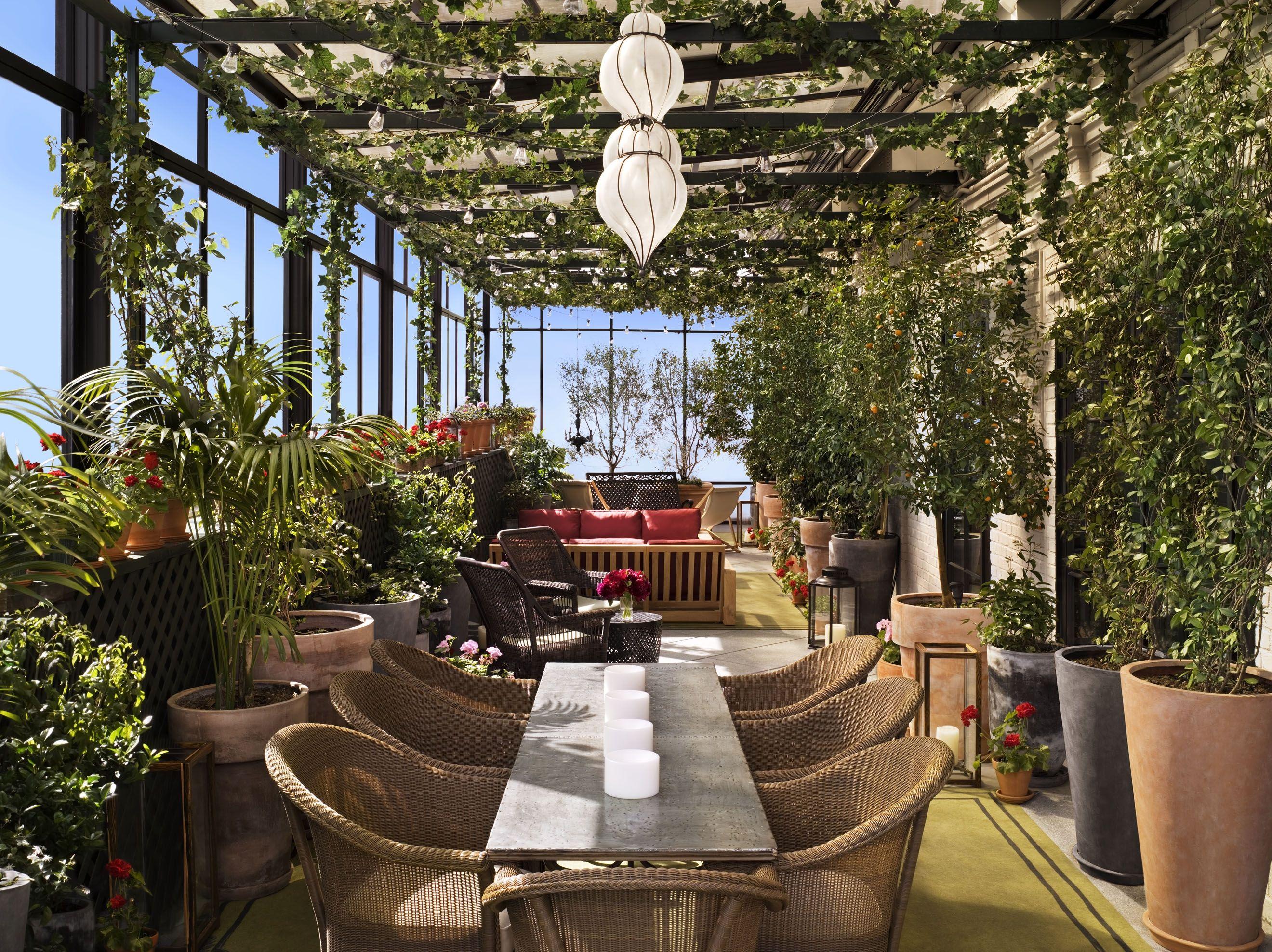 Rooftop Garden Bar Terasa