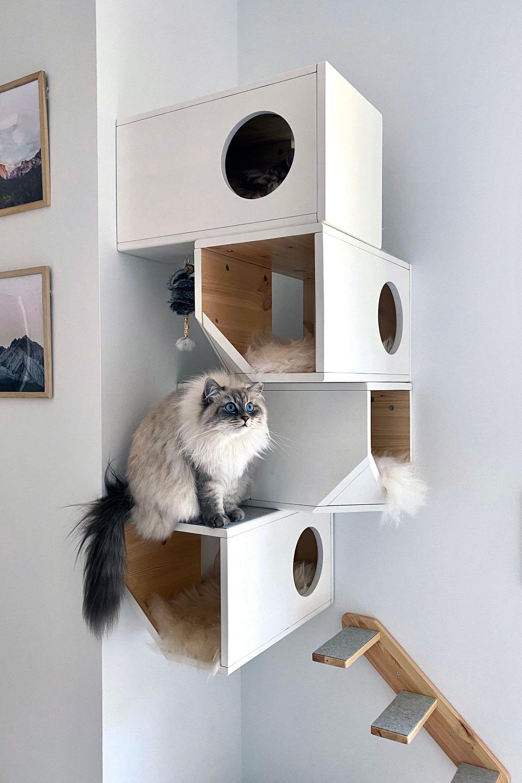 White Modular Cat House Cat room, Cat shelves, Cats