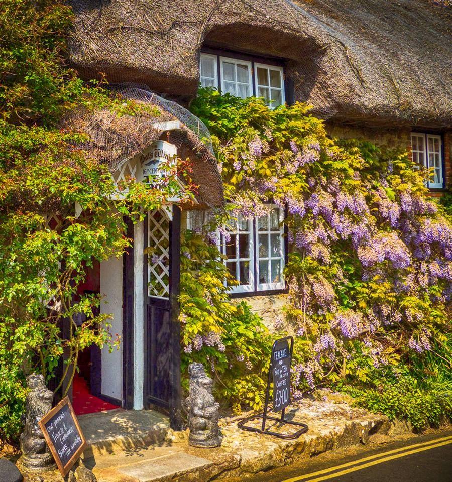 Bat\'s Wing Tea Room, Godshill, Isle of Wight. | Tea | Pinterest ...