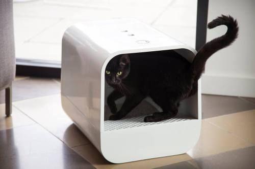 Grand Poobox Modern Style Covered Litter Box Kickstarter Campaign Best Cat Litter Litter Box Cat Litter