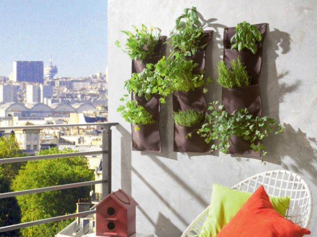 Idee deco terrasse decorer les murs jardin id es for Idee deco plantes terrasse
