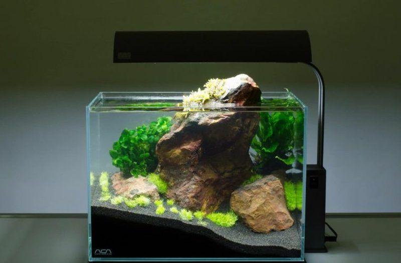 Aquarium Deko Selber Machen Inspirierende Ideen Und Tipps Deko Selber Machen Aquarium Deko Deko