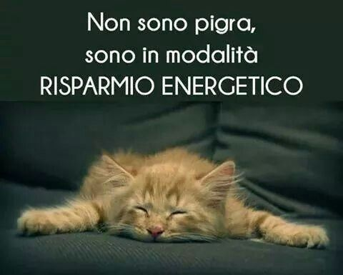 """I'm not lazy, I'm in """"energy saving"""" mode!!! #compartirvideos #immaginidivertente"""