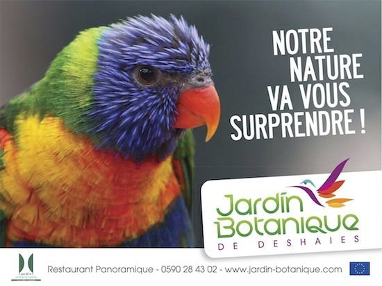 Jardin Botanique de Deshaies, Guadeloupe   BeCom Caraïbes