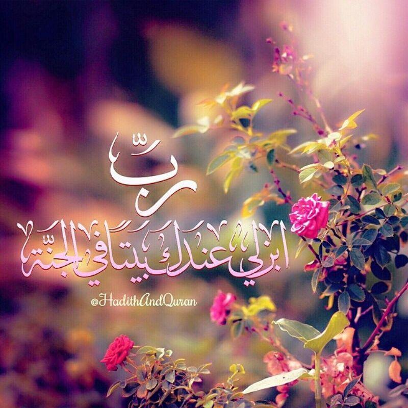 الجار قبل الدار Islamic Pictures Islamic Wallpaper Holy Quran