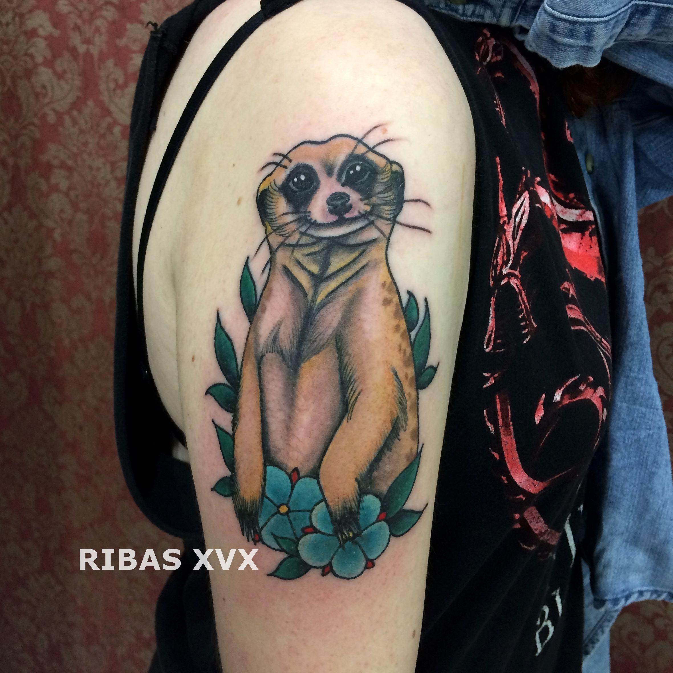 Meerkat By Ryan Mason At Scapegoat Tattoo Portland T