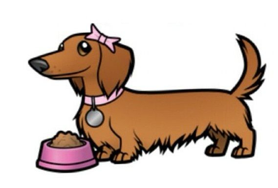 Pin By April Harrison On All Things Weenie Dachshund Cartoon